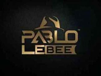 Pablo Le Bee – Skroef 28 In Dub (Christian BassMachine)