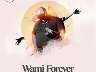 Heavy K – Wami Forever ft. Soulstar & Mo T Video,Heavy K ft. Soulstar & Mo T – Wami Forever