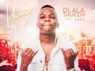 Dlala Thukzin – Phuze ft. Zaba