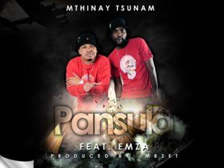 Mthinay Tsunam ft. Emza – Pansula