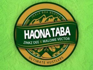 Zinkz Dee Ft. Malome Vector – Haona Taba