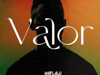 ALBUM: Wadlalu Drega – Valor