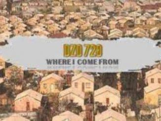 Dzo 729 Ft. Guyu Pane – Ngifuna Wena
