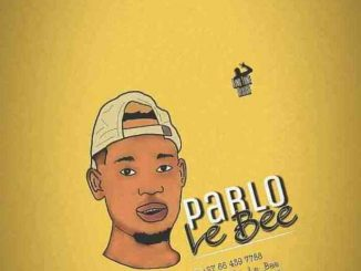 Pablo Le Bee & Sliga – Latter (Christian Bassmachine),Pablo Le Bee – Baby Boy Vigro Deep (Christian Bassmachine)