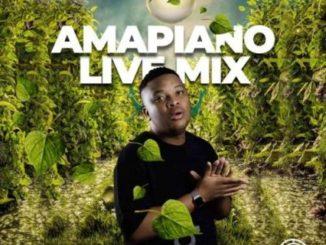 Snow Deep – Amapiano Live Mix