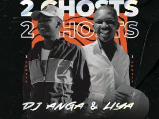 Dj Anga & Liya – African Root ft. Nwaiiza Nande