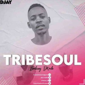 Rowen & TribeSoul – Ties (Dub Feel),TribeSoul – For Ben & Kelvin Momo (Tribute Mix),TribeSoul & Bido Vega – Crowded (Private School piano)