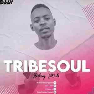 TribeSoul – Resonate (Main Soulfied),TribeSoul & Bido Vega – Nkulee