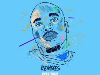 China Charmeleon – Sad To Think (The Animal Remix)