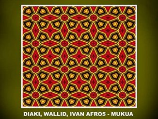 Diaki, Wallid & Ivan Afro5 – Mukua (Original Mix)
