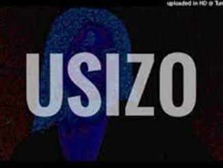 Kabza De Small, Ami Faku, Sha Sha Sha Type Beat – USIZO