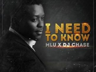 MLU Ft. DJ Chase – I Need To Know