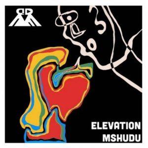 Mshudu – Elevation EP