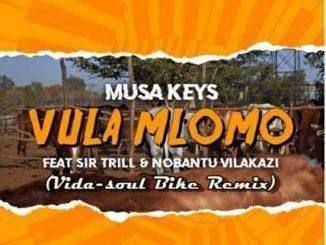Musa Keys – Vula Mlomo Ft. Sir Trill & Nobantu Vilakazi (Vida-soul Bike Remix)
