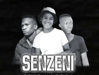 Musical Jazz Ft. Madoda, DJ Shima & XoliSoul MF – Senzeni