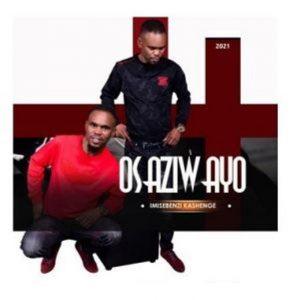 Osaziwayo – Zina Mashende