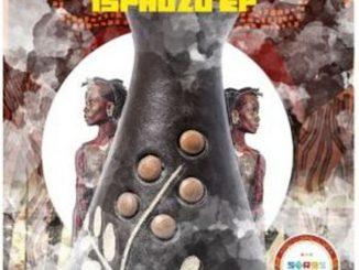 ZIDDO & Vibe Afrika – Lesedi (Bun Xapa & Sware Remix)