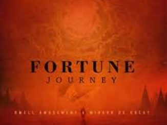 Dwell Amusement & Mirror De Great – Fortune Journey EP