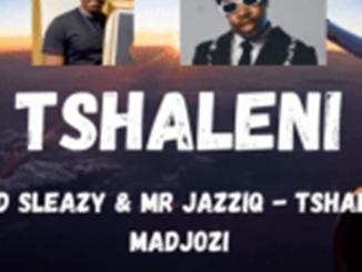 Mellow and Sleazy & Mr JazziQ – Tshaleni Ft. Sho Madjozi