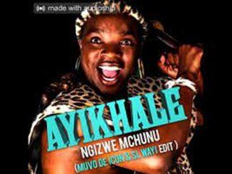 Ngizwe Mchunu – Ayikhale (Muvo De Icon & SL-Wayi edit)
