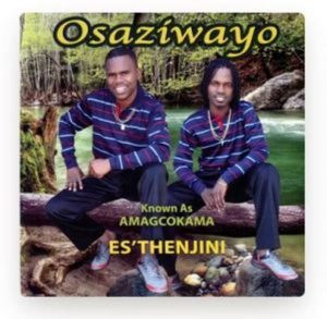 Osaziwayo – Es'Thenjini