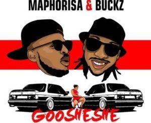 DJ Maphorisa & DJ Buckz – Goosheshe ft. Sjava & TDK Macassette