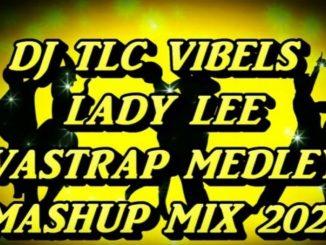 DJ TLC Vibels – Vastrap Medley Mashup Mix 2021 Ft. Lady Lee