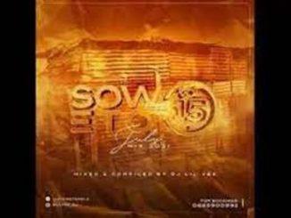 Dj Lil Vee – Soweto Feel Vol 15 (July Mix 2021)