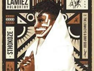 Lamiez Holworthy – Sthokoze Ft The Lowkeys & Drip Gogo