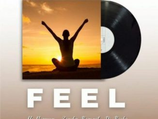 Mac Norman, DJ Bucks & Zander Baronet – Feel