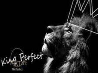 Mr perfect – Smokolo ft Dj la bengwa & Nxani sa