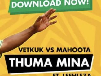 Vetkuk vs Mahoota & ANC – Thuma Mina