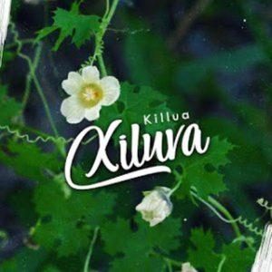 Killua – Xiluva