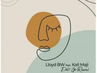 Lloyd BW Ft. Kali Mija – Don't Go (Jazzuelle Broken Dreams)