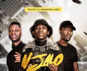 Pro Tee – Njalo (feat. Manqonqo & Airic)