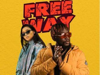 Tripcy & Lady Du – Free Me ft. DJ Pee Raven Video,Tripcy & Lady Du – Free Me ft. DJ Pee Raven