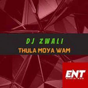 DJ Zwali – Thula Moya Wam (Gospel Gqom)