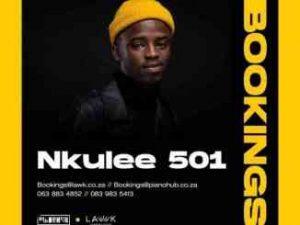 Nkulee 501 – Related (Main Mix) ft. Djy Zan SA & Fanarito