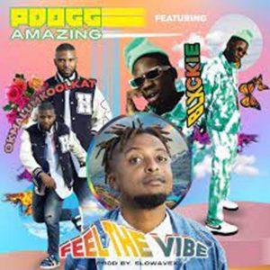 PDogg Amazing – Feeling The Vibe Ft. Okmalumkoolkat & Blxckie