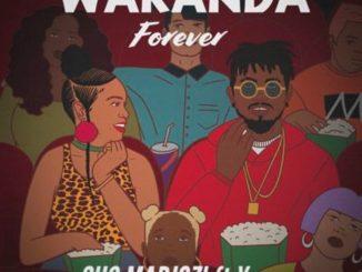 Sho Madjozi – Wakanda Forever ft. Ycee