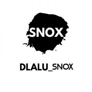 Snox – 1st Attempt